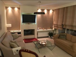 Space and Comfort in Elliniko Athens - Elliniko vacation rentals