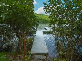Captivating & Cozy 3 Bedroom Lakefront Cottage w/ Private Dock! - McHenry vacation rentals