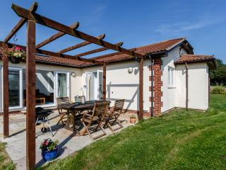 Contemporary pet friendly cottage near Sidmouth - Sidmouth vacation rentals