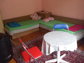 Beautiful 1 bedroom Sandanski Apartment with Internet Access - Sandanski vacation rentals