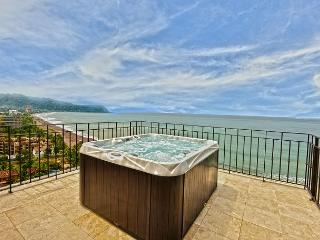 Unique Oceanview Penthouse w/Jacuzzi. Available for the Holidays! - Jaco vacation rentals