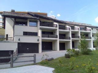 Family & Spacious Alpine Apartment with 7 beds - Celerina vacation rentals