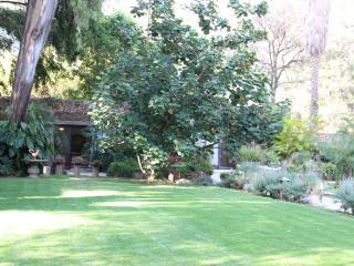 Wood Floor Apartment with Garden and Patios - Ajijic vacation rentals