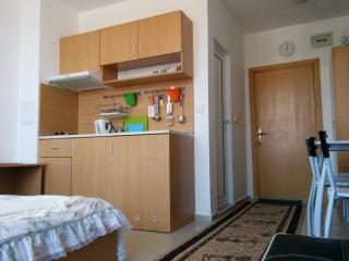 Sandapart Nautilus Club Apartment - Sunny Beach vacation rentals