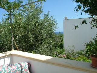 marina di castro in villa mono e bilocali - Andrano vacation rentals