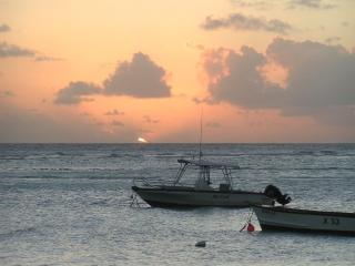 Boobyduck Cottage ... Live Barbados! - Dover vacation rentals