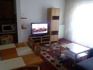 2 bedroom Apartment with Internet Access in Warsaw - Warsaw vacation rentals
