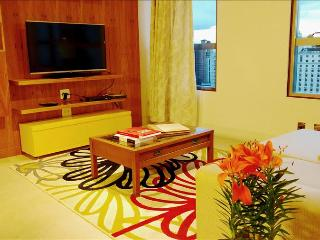 Nice 1 bedroom Condo in Campinas - Campinas vacation rentals