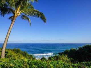 Big Ocean View! 2br Massive Lanai, Chef's Kitchen! - Princeville vacation rentals