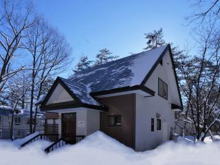 Nice House with Television and Central Heating - Hakuba-mura vacation rentals