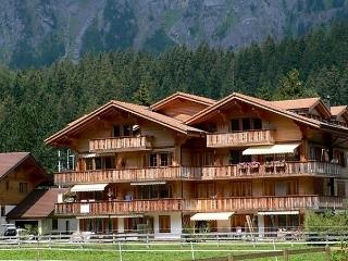 1 bedroom Apartment with Television in Kandersteg - Kandersteg vacation rentals