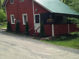 Otter Lake Cottage- 10 Miles south of Old Forge - Old Forge vacation rentals