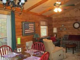 Cozy Cabin with DVD Player and Central Heating - Linville Falls vacation rentals