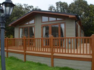 Beautiful Lodge with Internet Access and Wireless Internet - Climping vacation rentals