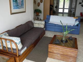Clean Spacious Home Close to Beaches - Fajardo vacation rentals
