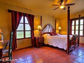 Frida Room - Mazatlan vacation rentals