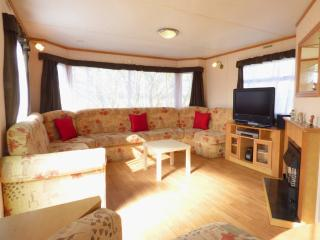 Burton 8 berth caravan at Southview Leisure Park Skegness - Skegness vacation rentals