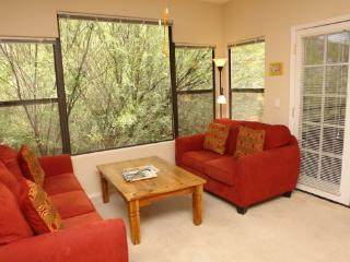 Canyon View 15202 - Tucson vacation rentals