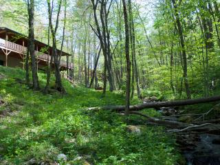 Mountain Creek Cabin - Maggie Valley vacation rentals