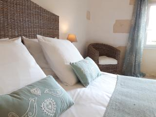 Large bright room in the Bordeaux vineyards - Teuillac vacation rentals