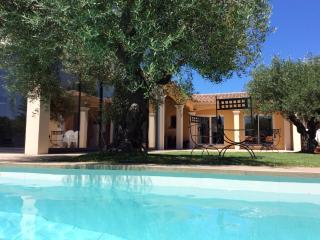 Villa  15 kmAVIGNON for 6 p. + pool - - Monteux vacation rentals
