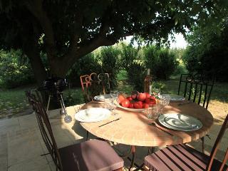 Chez  OLIVE      Au calme et à la campagne à 10 minutes d'Avignon - Montfavet vacation rentals