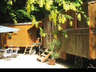 Gîte-roulottes piscine en pleine nature - Sancerre vacation rentals