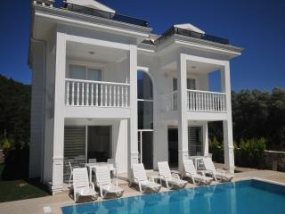 Silver B 4 bedroom luxury villa, Hisaronu, Fethiye - Hisaronu vacation rentals