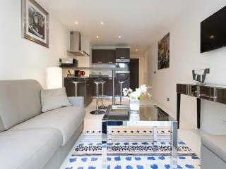 Luxury Apartment Croisette Cannes - Cannes vacation rentals