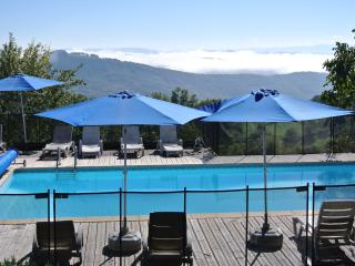 La Cardabelle, La Caze Gites, Tarn Valley, - Villefranche-de-Panat vacation rentals