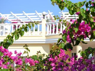 HONEYMOON VILLA; Romantic, Private Gardens & Pool - Kargicak vacation rentals