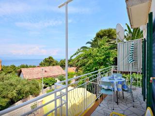 Apartment 2, Vitarnja, Jelsa, island of Hvar - Jelsa vacation rentals