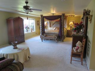 Sam's Mansion 6BR+6BA  (8,000 SF) $995 - Bentonville vacation rentals