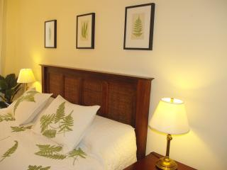 2 bedroom house, walking distance to museums - Washington DC vacation rentals