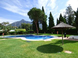 El Coto Real - Nueva Andalucia vacation rentals