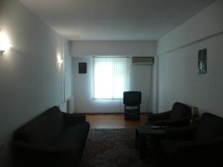 1 bedroom Apartment with Internet Access in Tashkent - Tashkent vacation rentals