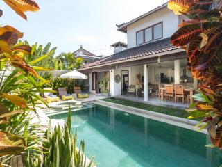 Gorgeous 3 bedroom tropical villa in Seminyak - Seminyak vacation rentals