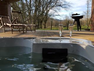 Abernant Barn - sleeps 8 (hot tub) - Llanwrtyd Wells vacation rentals