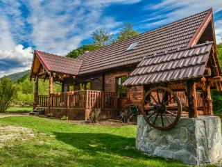 Romantic Cabin with Deck and Internet Access - Borlova vacation rentals