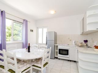 Apartments Villa Dingac-Two Bedroom Apartment No.6 - Potomje vacation rentals
