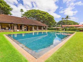 Aina Nalu Resort I-108 - Lahaina - Lahaina vacation rentals