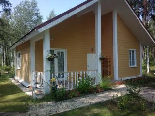 Cottage in the woods next to Don - Zadonsk vacation rentals
