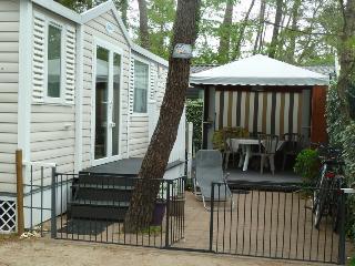 Mobil-home Saint Jean de Monts - Saint-Jean-de-Monts vacation rentals