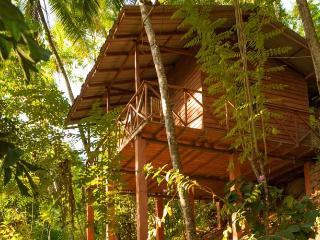 Lake View Cabana at Polwaththa Eco Lodge Sleeps 4 - Digana vacation rentals