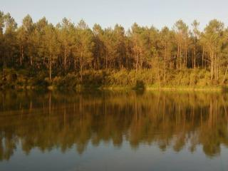 Cuckoo Lake - Forest Fishing and Nature Holidays - Saint-Aulaye vacation rentals