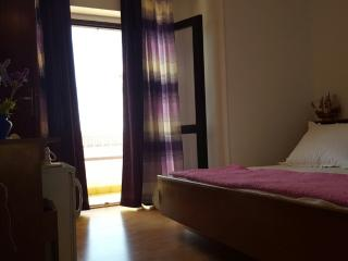 1 bedroom Private room with Balcony in Tucepi - Tucepi vacation rentals