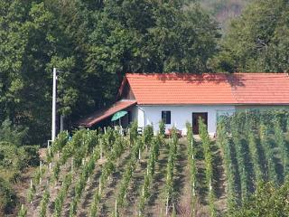 Charmante wijnboerderij - Kroatie - Varazdin vacation rentals