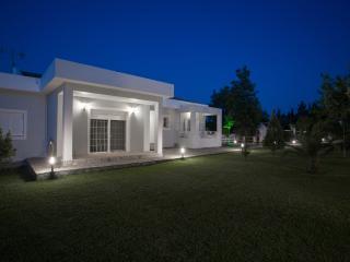 4 bedroom Villa with Television in Kato Korakiana - Kato Korakiana vacation rentals
