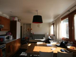 Cosy apartment  ideal proximity for Tour de France - Saint Jean d'Aulps vacation rentals