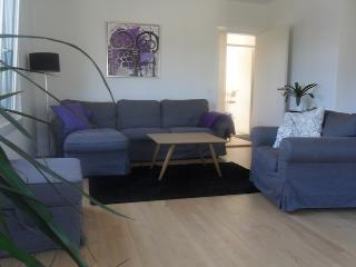 Large and cosy Copenhagen apartment - Copenhagen vacation rentals